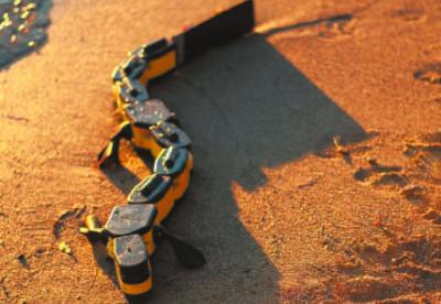 Ползающий робот Salamandra robotica II