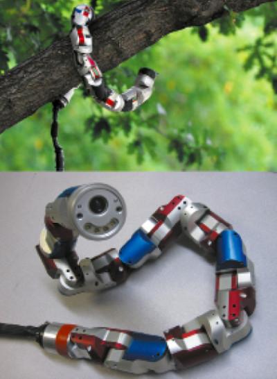 Модульные конструкции — робототехнические змеи