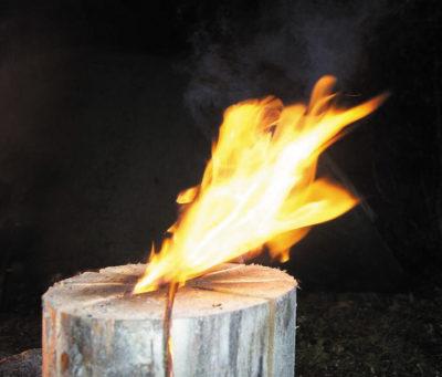 Таежная (финская, шведская, индейская) свеча
