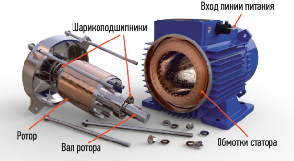 Внутренние части электродвигателя переменного тока