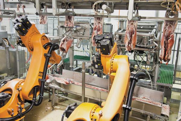 Роботы перерабатывают сырое мясо ягненка на линии упаковки мяса, избавляя операторов от тяжелых условий труда и потенциальных рисков, связанных с охлаждаемыми тесными рабочими пространствами