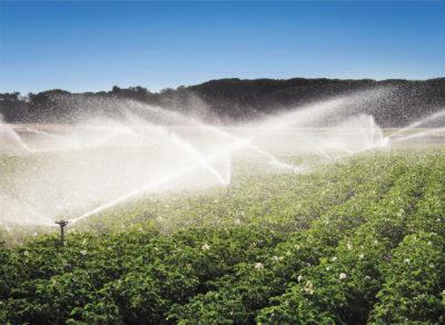 «Умное» сельское хозяйство