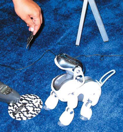 Робот AIBO распознает знак на карточке как команду для выполнения