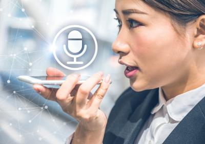 Cистема голосовой биометрии