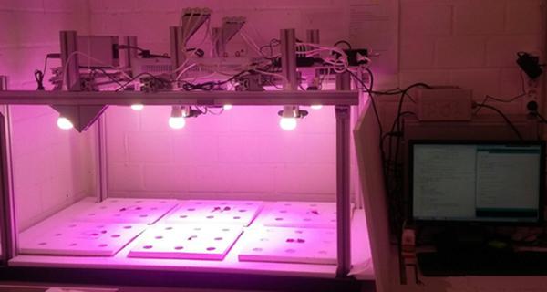 Ученые Сколтеха научили нейронные сети оценивать и предсказывать динамику роста растений