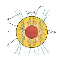Модель геодинамо
